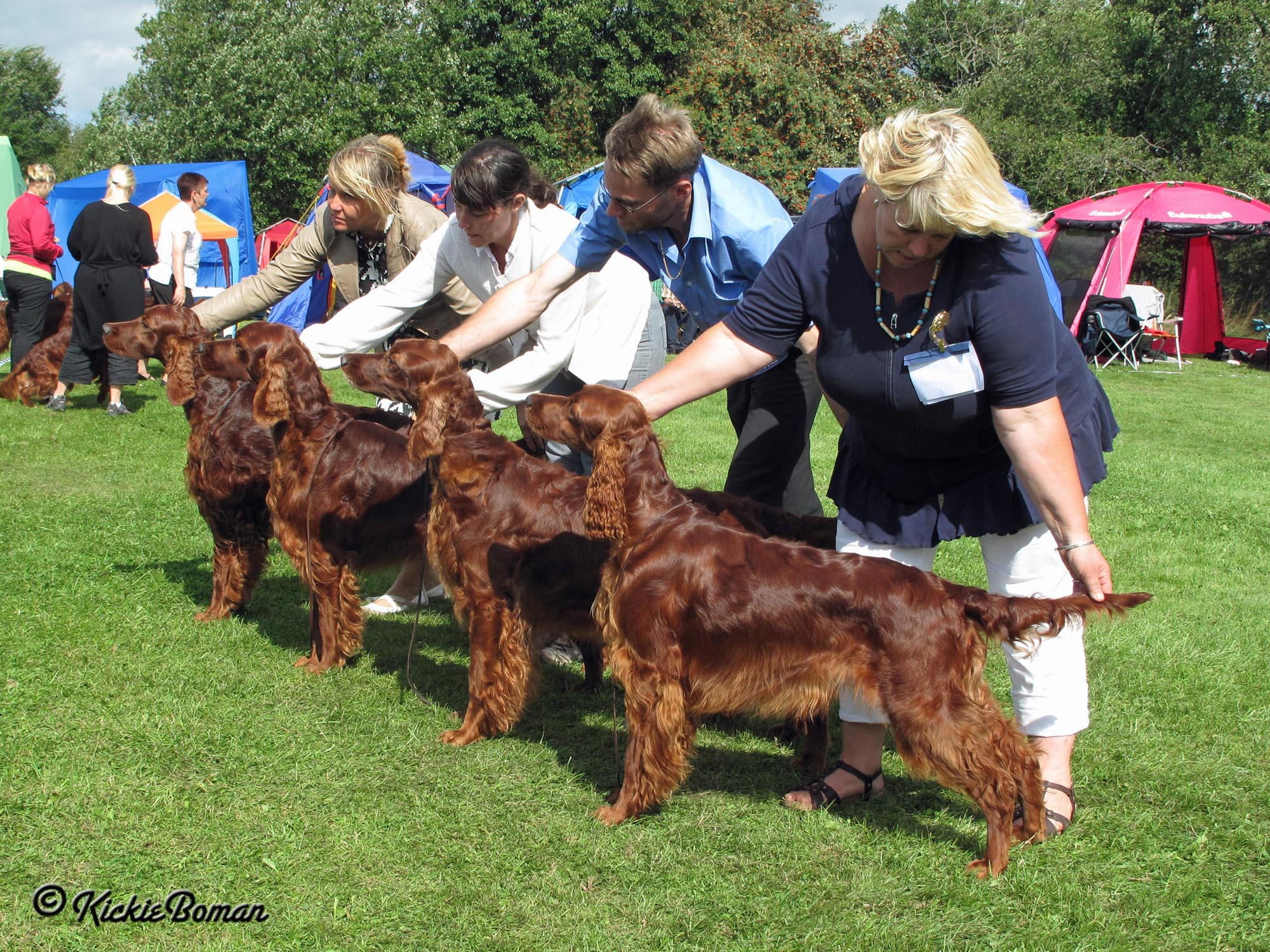Coppers breedersgroup